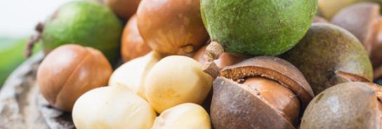 Macadamiapähkinät