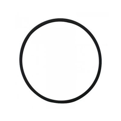 O-ring till Bottenplatta Omniblend Kanna 1