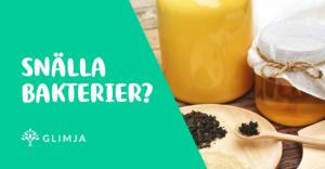 Varför ska man äta probiotika/hälsosamma magbakterier? 4
