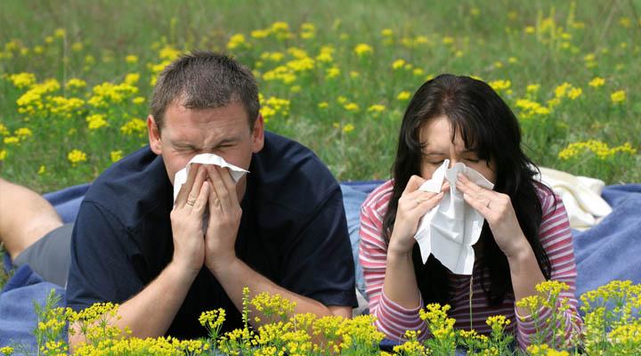 Pollenallergi? Usch! 1