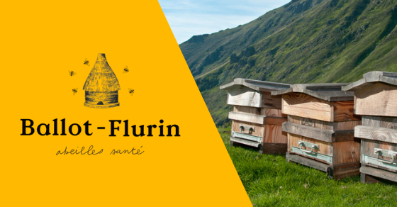 Ballot Flurin - Gentle Beekeeping 1