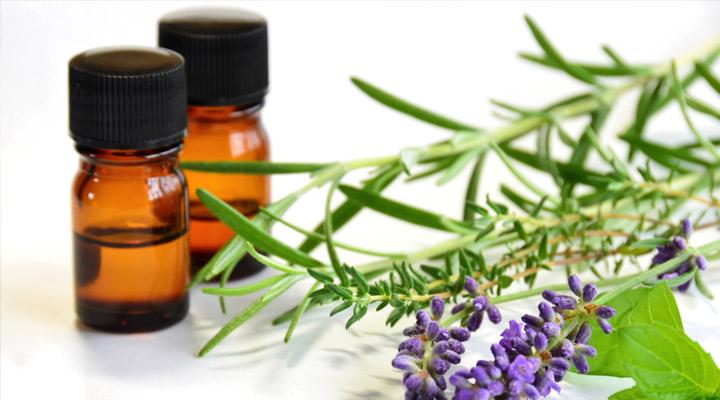 Gör egen spray eller olja med eteriska oljor och håll mygg, broms och fästingar på avstånd! 3