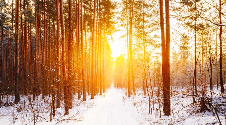 Har du torr hud eller eksem som blir värre under vintern? 3