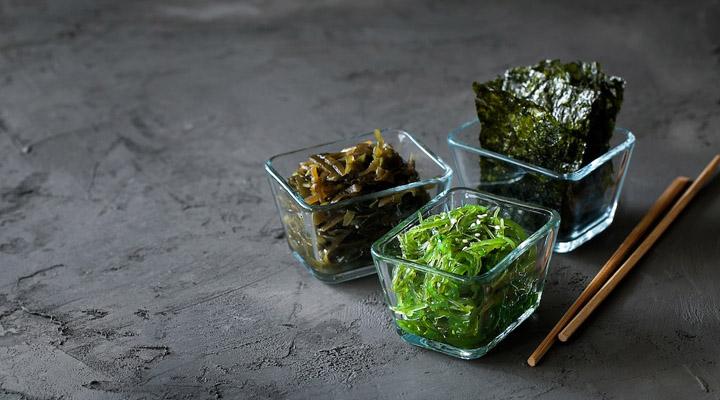 Sjögräs - en näringsrik föda för alla 3