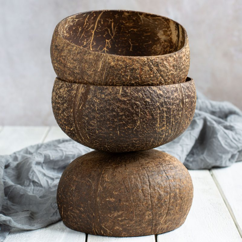 Natural Coconut Bowl 1