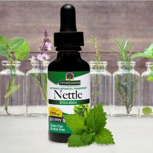 Natures-Answer-Nettle-Liquid-Extract-No-Alcohol-1-1-01-1-700x700-1-300x300.jpg