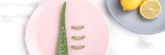 Hälsosamma växter