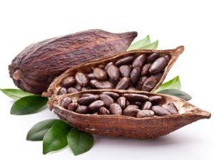 cacao.jpeg.-300x225.jpg