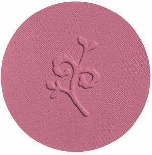 benecos-compact-blush-ebeguemeci-guel-671497-en-300x305.jpg