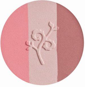 benecos-natural-trio-blush-fall-in-love-671020-en-300x307.jpg