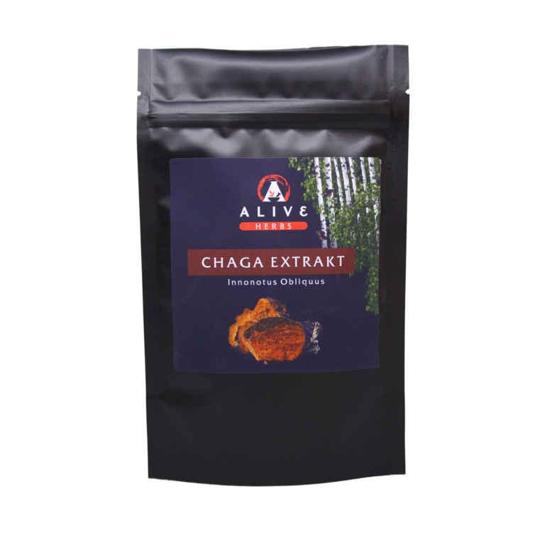 Chaga 10:1 Extrakt 100 gram 1