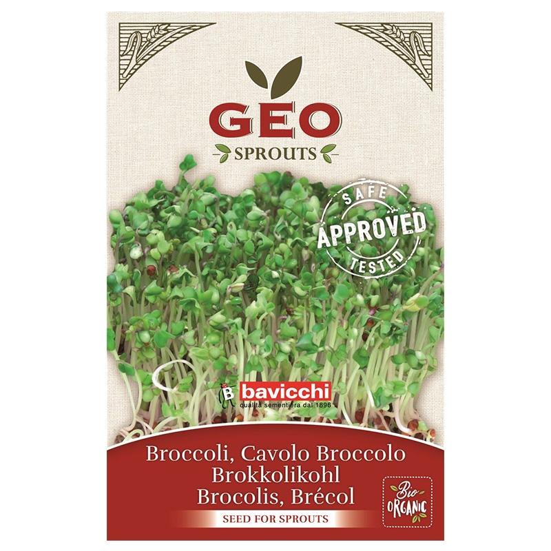 Groddfrön Broccoli 13g