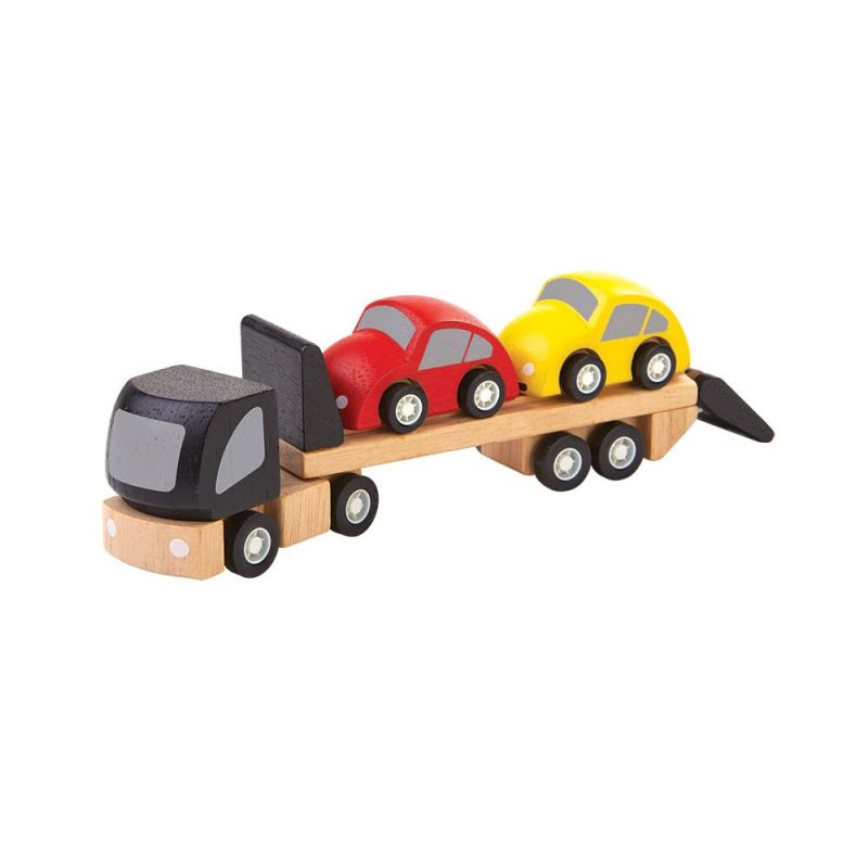 Liten Biltransport med Två Bilar
