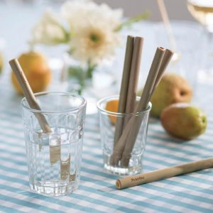 short-bamboo-straws-set-of-6-wit14h-brush-300x300.jpg