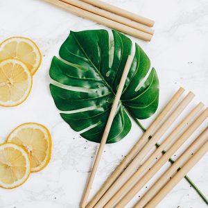 sugror-i-ekologisk-bambu-bambaw-bamboo-straws-3-300x300.jpeg